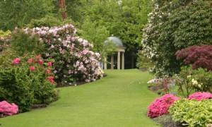 Английский сад в ландшафтном дизайне