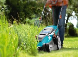 Основные правила стрижки газона