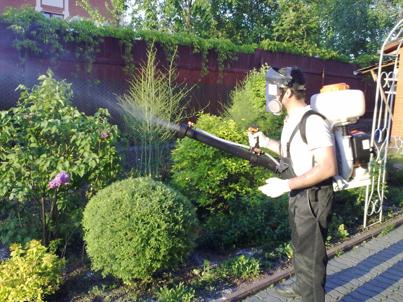 Химические средства защиты растений, основные правила хранения и работы с ними